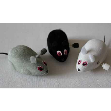 Mouse stretcher 7 cm.