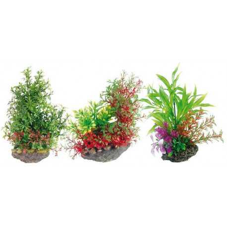 Rostlina mix 22 cm
