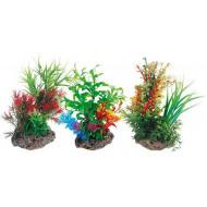 Mix plant 1 22 cm