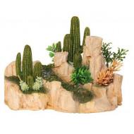 Kámen s kaktusem M