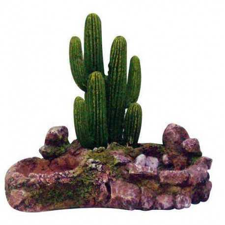 Island with cactus M