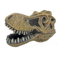Tyrannosaurus skull 14x8,5x9cm