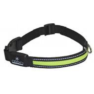 LED luminous collar