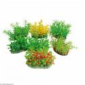Rastlinka Tropical 8cm