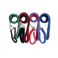 Nylon leash with collar