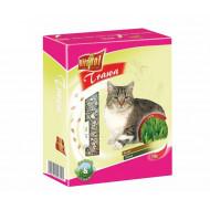 20/5000 Tráva pro kočky 100g