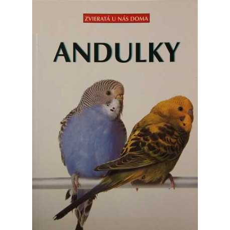 Budgie - Animals in our home
